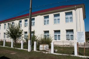 negri-scoala-300x200